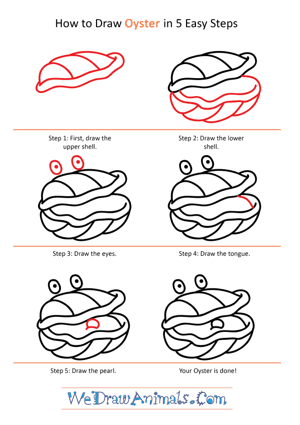 How to Draw a Cartoon Oyster - Step-by-Step Tutorial