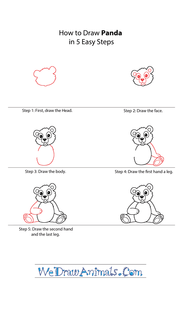 How to Draw a Cartoon Panda - Step-by-Step Tutorial