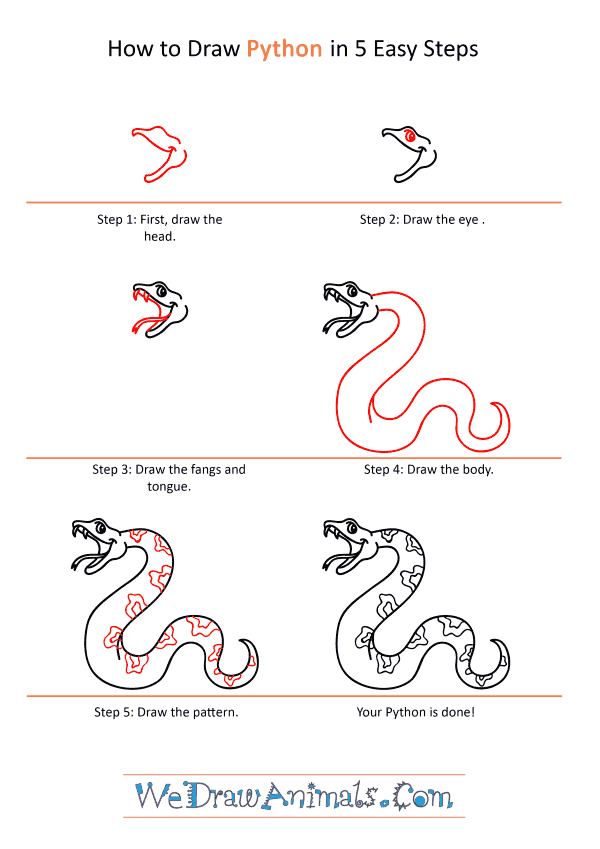 How to Draw a Cartoon Python - Step-by-Step Tutorial