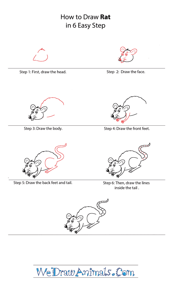 How to Draw a Cartoon Rat - Step-by-Step Tutorial