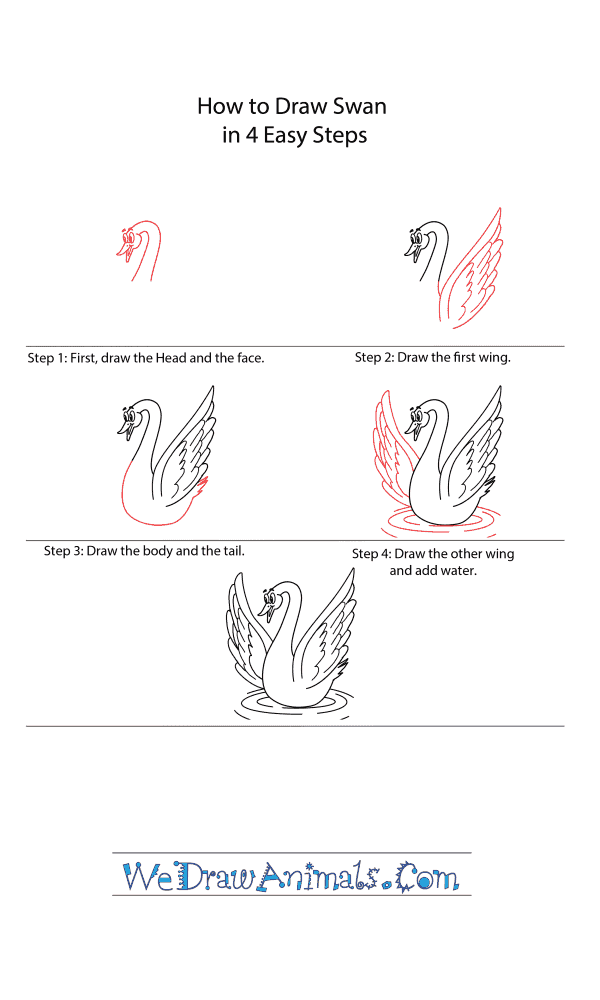 How to Draw a Cartoon Swan - Step-by-Step Tutorial