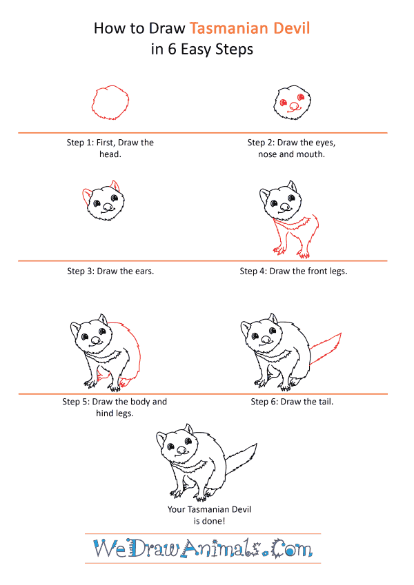 How to Draw a Cartoon Tasmanian Devil - Step-by-Step Tutorial