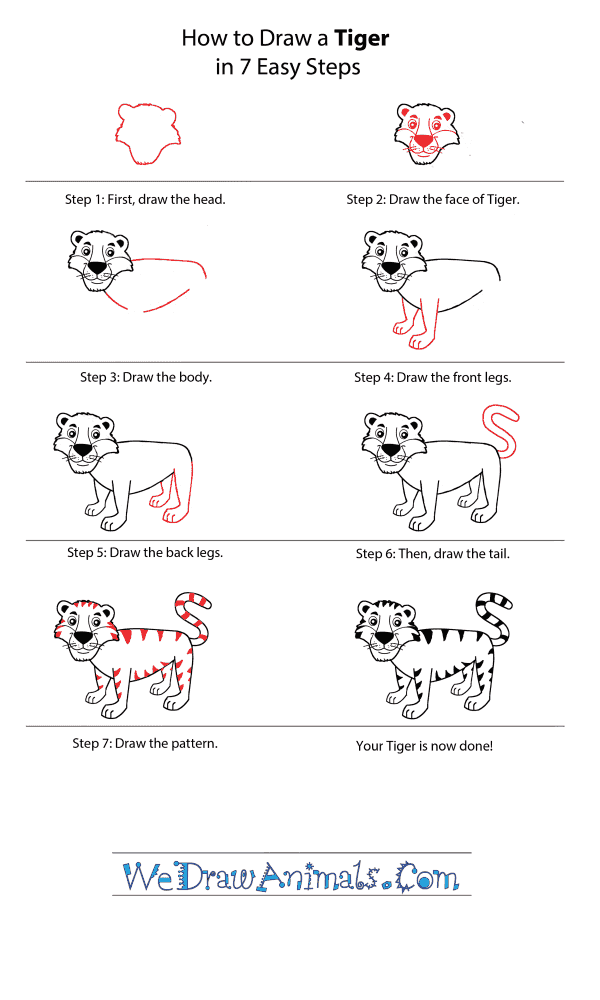 How to Draw a Cartoon Tiger - Step-by-Step Tutorial