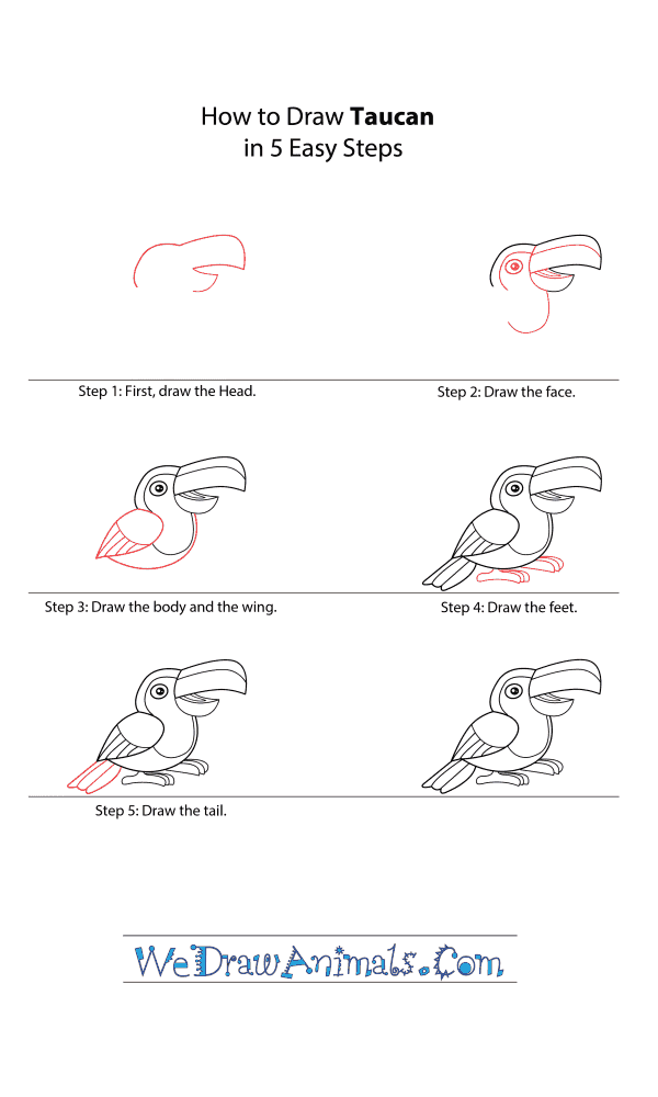 How to Draw a Cartoon Toucan - Step-by-Step Tutorial