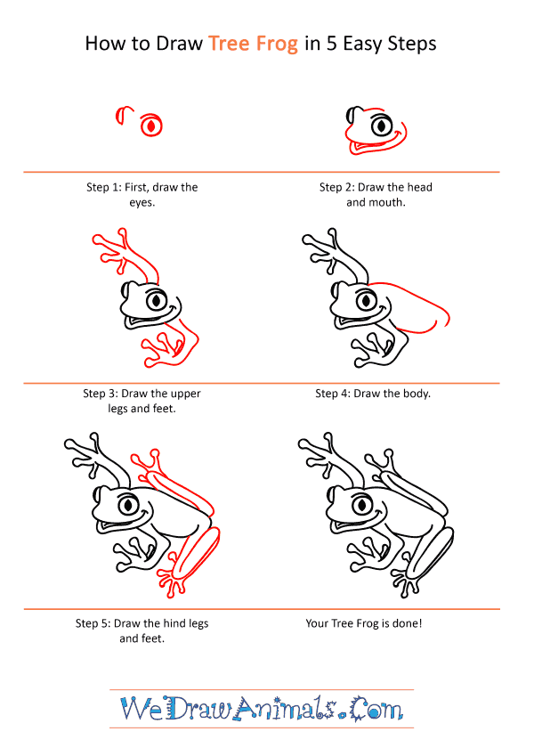 How to Draw a Cartoon Tree Frog - Step-by-Step Tutorial