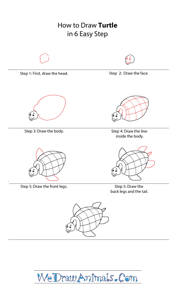 How to Draw a Cartoon Turtle - Step-by-Step Tutorial