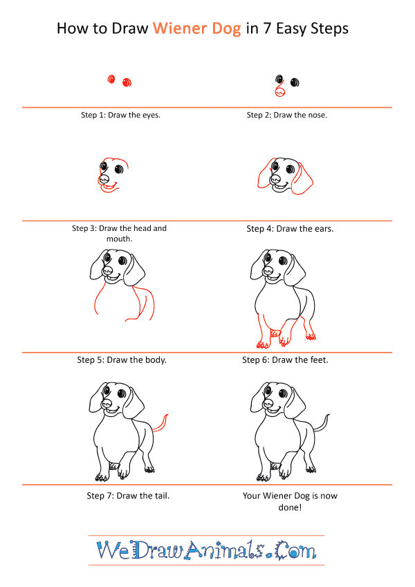 How to Draw a Cartoon Wiener Dog - Step-by-Step Tutorial