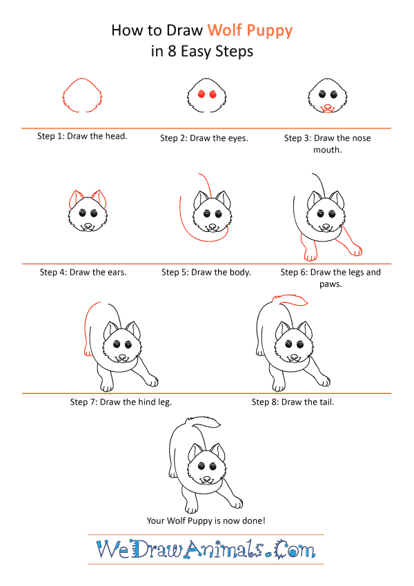 How to Draw a Cartoon Wolf Pup - Step-by-Step Tutorial