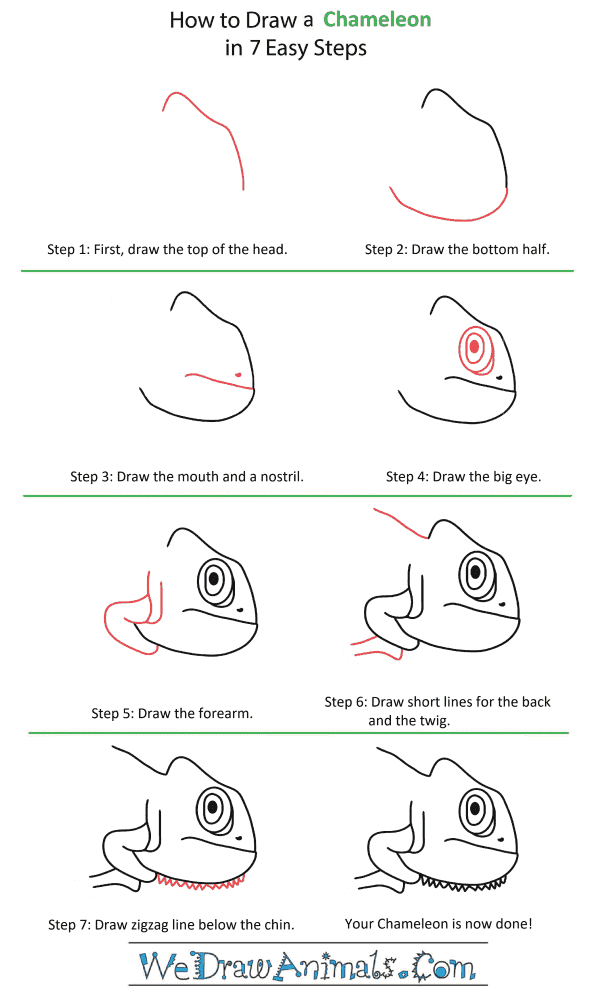How to Draw a Chameleon Head - Step-by-Step Tutorial
