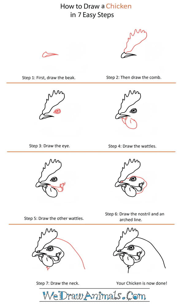How to Draw a Chicken Head - Step-by-Step Tutorial