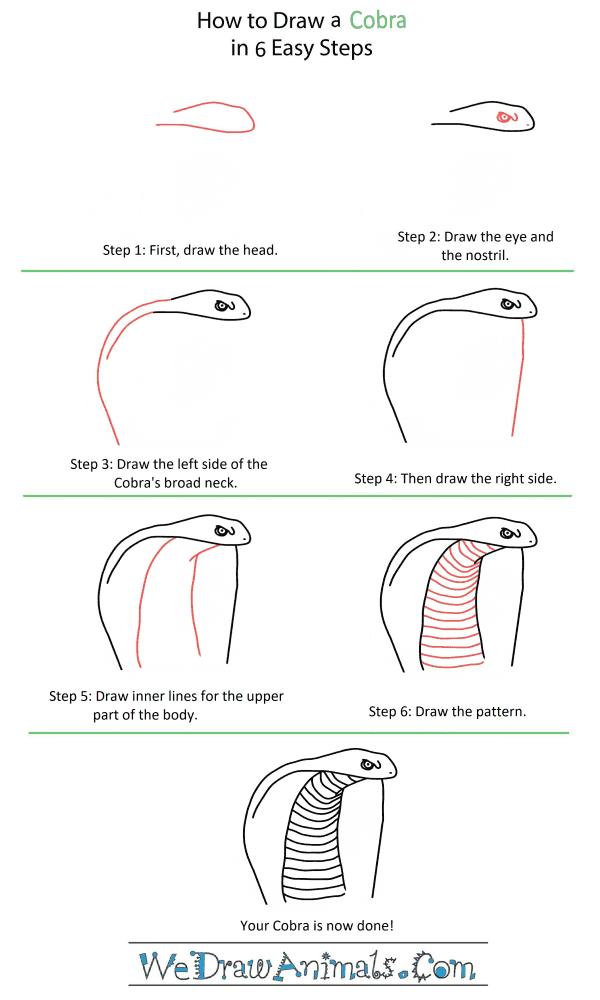 How to Draw a Cobra Head - Step-by-Step Tutorial
