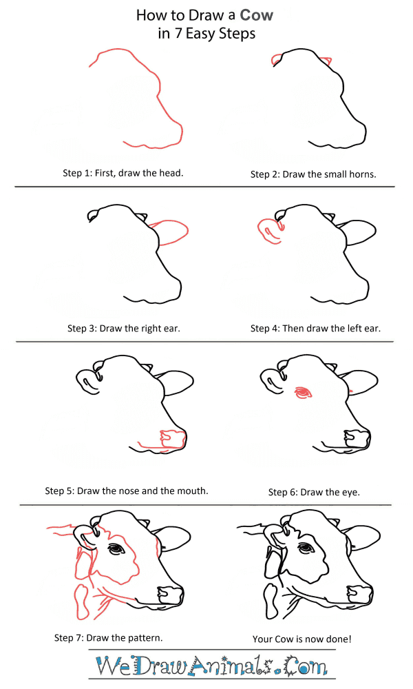 How to Draw a Cow Head - Step-by-Step Tutorial