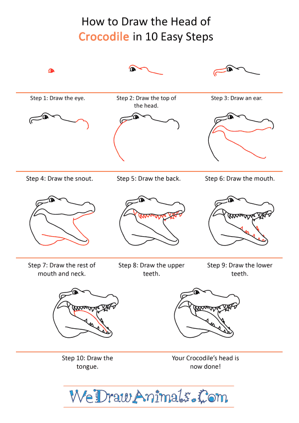 How to Draw a Crocodile Face - Step-by-Step Tutorial