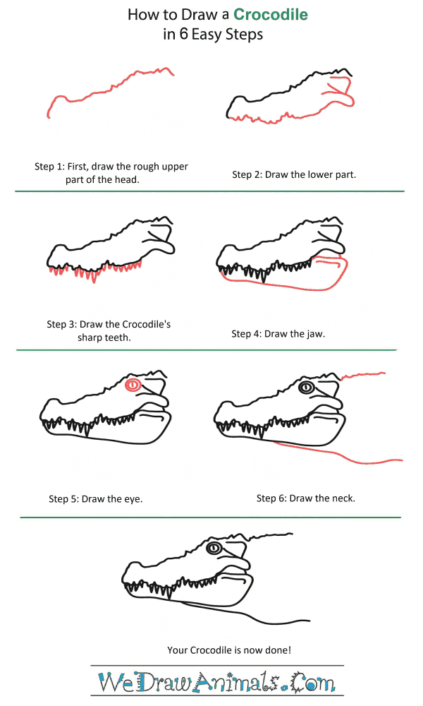 How to Draw a Crocodile Head - Step-by-Step Tutorial