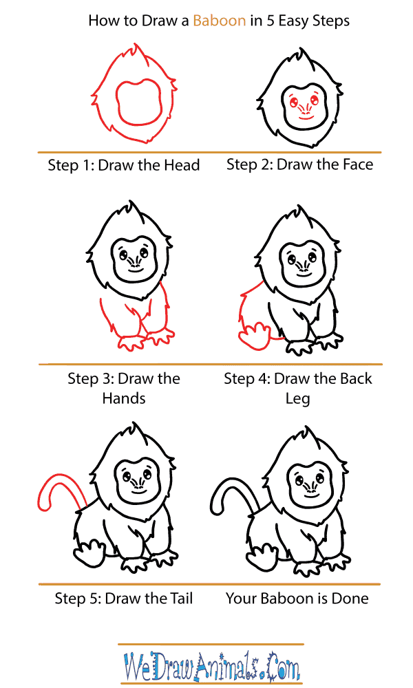 How to Draw a Cute Baboon - Step-by-Step Tutorial