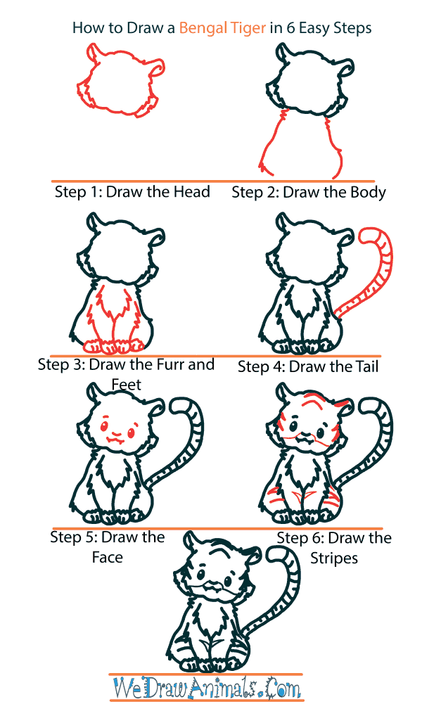 How to Draw a Cute Bengal Tiger - Step-by-Step Tutorial