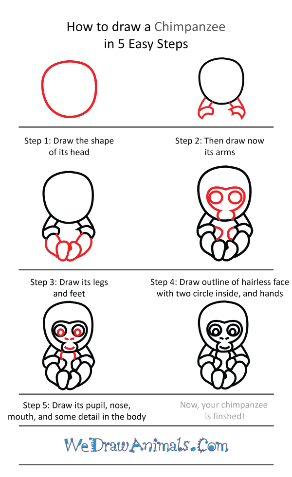 How to Draw a Cute Chimpanzee - Step-by-Step Tutorial