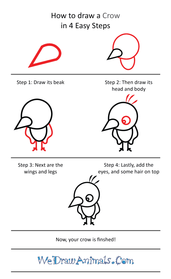 How to Draw a Cute Crow - Step-by-Step Tutorial