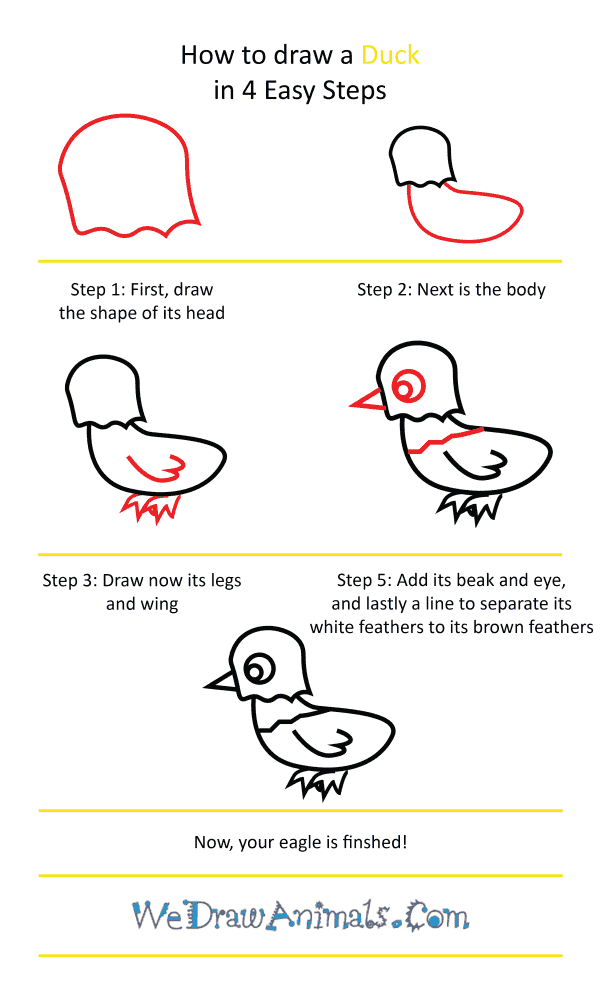 How to Draw a Cute Eagle - Step-by-Step Tutorial