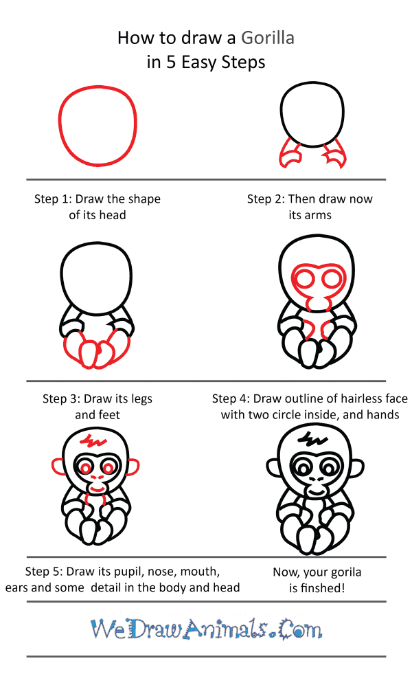 How to Draw a Cute Gorilla - Step-by-Step Tutorial