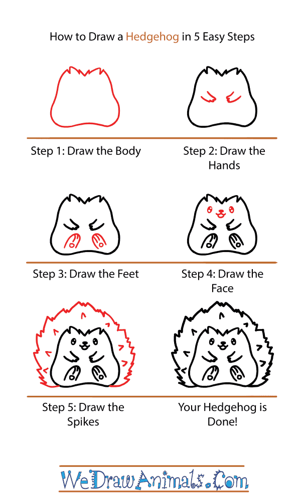 How to Draw a Cute Hedgehog - Step-by-Step Tutorial