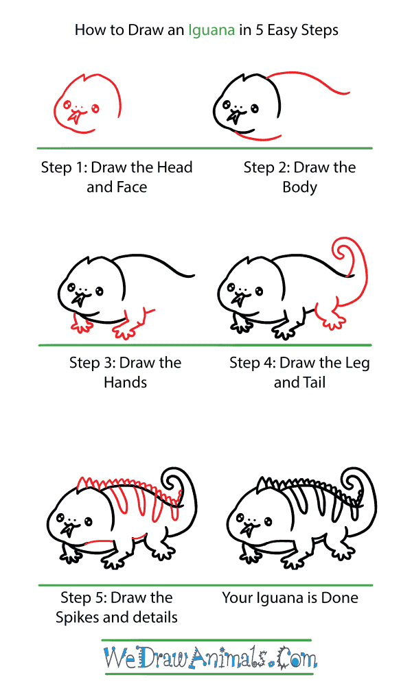 How to Draw a Cute Iguana - Step-by-Step Tutorial
