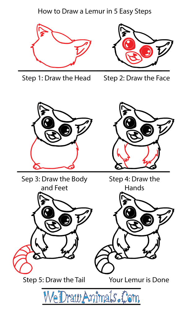 How to Draw a Cute Lemur - Step-by-Step Tutorial