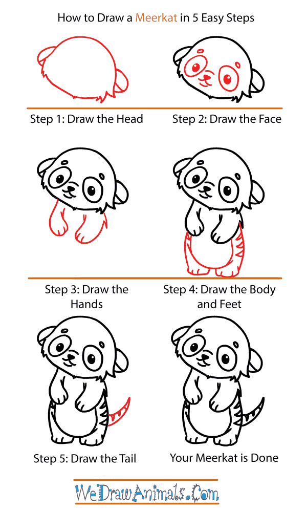 How to Draw a Cute Meerkat - Step-by-Step Tutorial