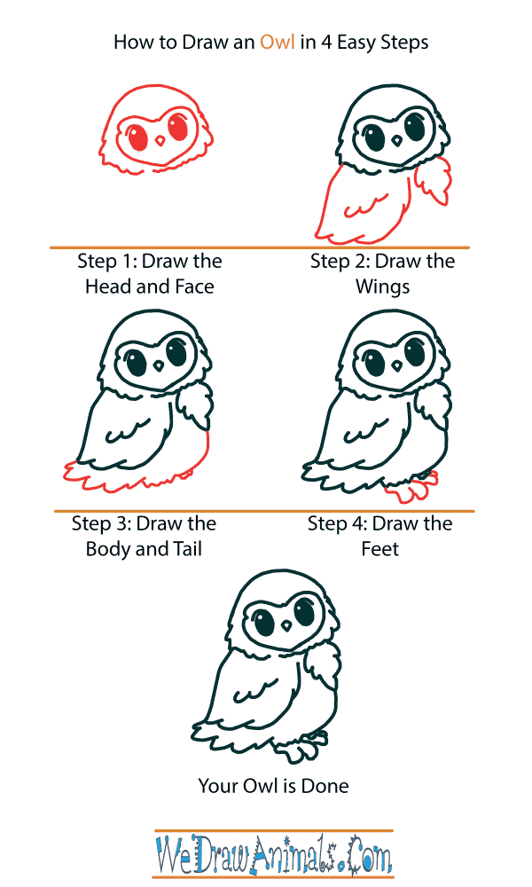 How to Draw a Cute Owl - Step-by-Step Tutorial