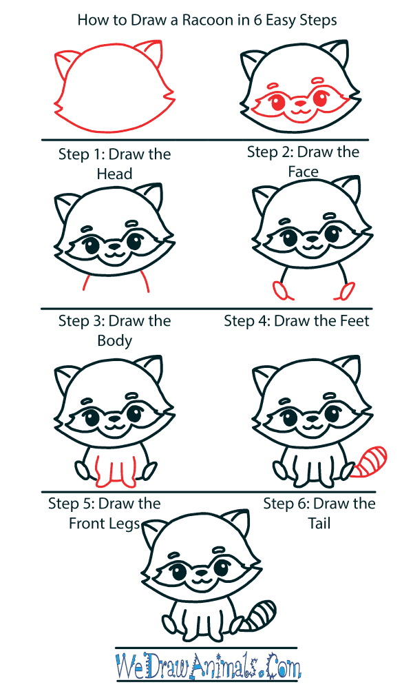 How to Draw a Cute Raccoon - Step-by-Step Tutorial