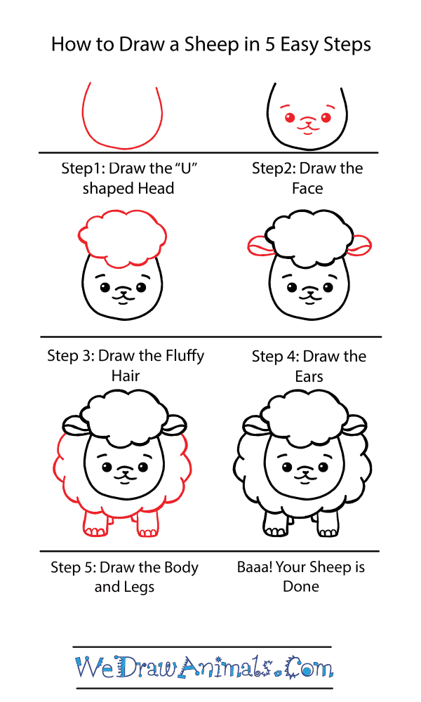 How to Draw a Cute Sheep - Step-by-Step Tutorial