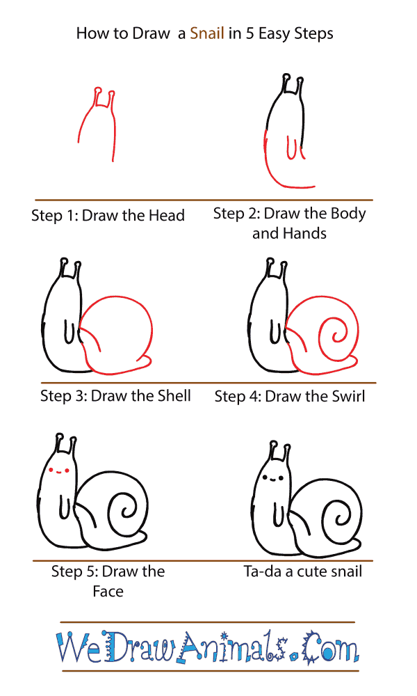 How to Draw a Cute Snail - Step-by-Step Tutorial