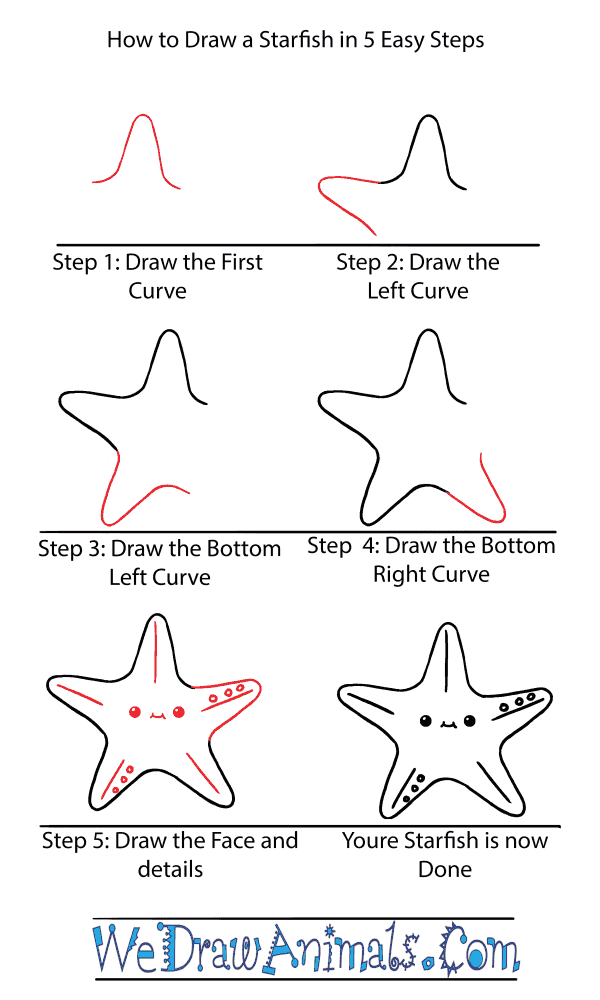 How to Draw a Cute Starfish - Step-by-Step Tutorial