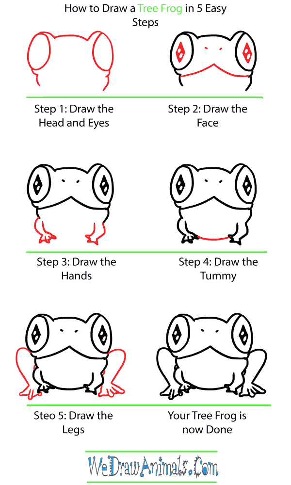 How to Draw a Cute Tree Frog - Step-by-Step Tutorial