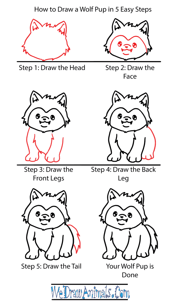 How to Draw a Cute Wolf Pup - Step-by-Step Tutorial