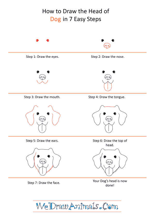 How to Draw a Dog Face - Step-by-Step Tutorial