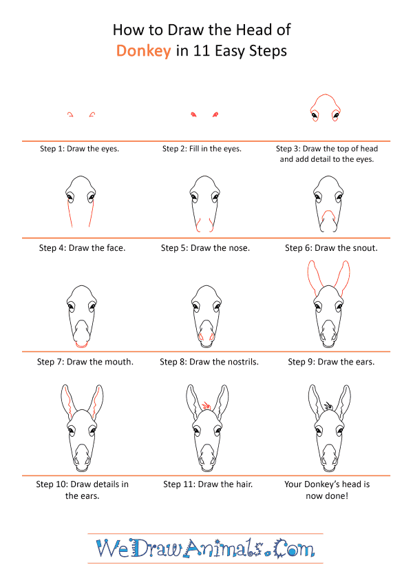 How to Draw a Donkey Face - Step-by-Step Tutorial