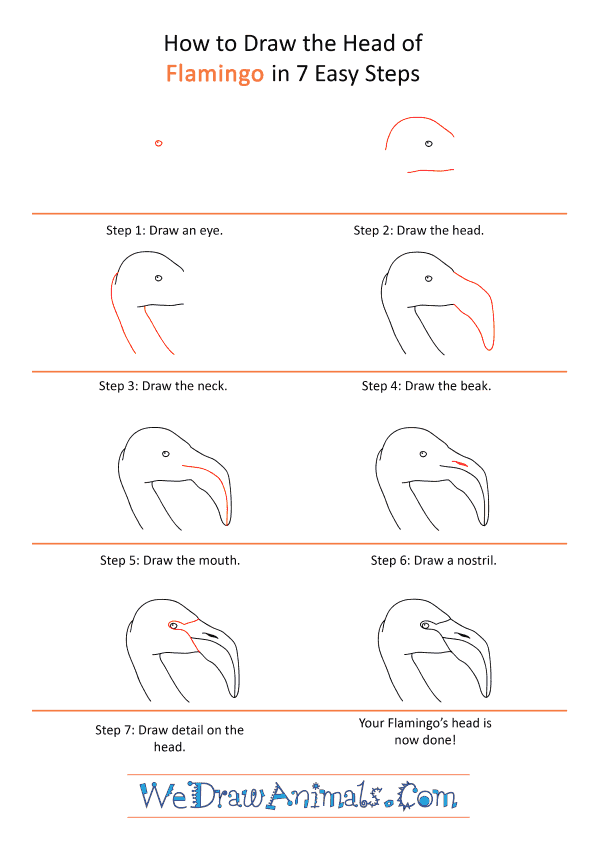 How to Draw a Flamingo Face - Step-by-Step Tutorial
