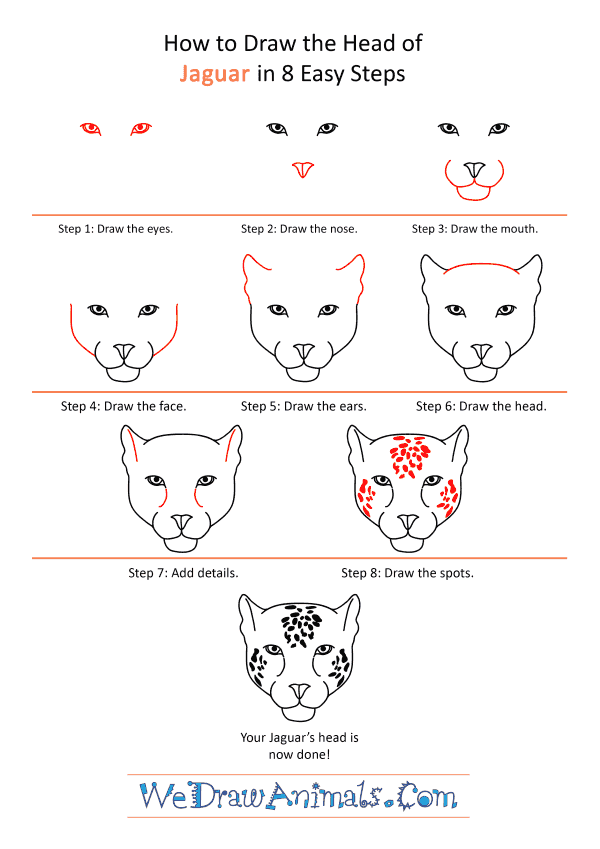 How to Draw a Jaguar Face - Step-by-Step Tutorial