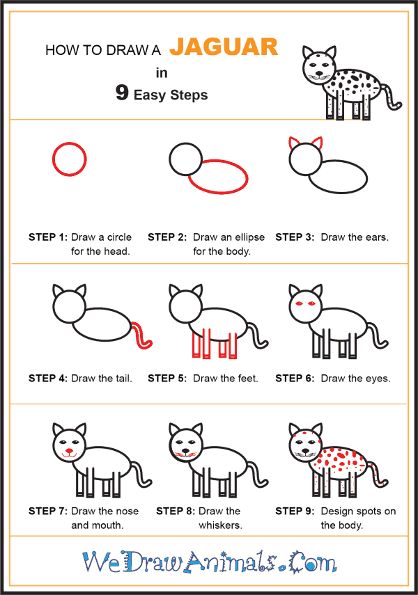 How to Draw a Jaguar for Kids - Step-by-Step Tutorial