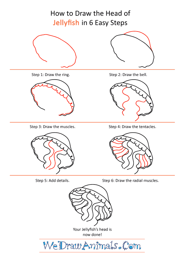 How to Draw a Jellyfish Face - Step-by-Step Tutorial