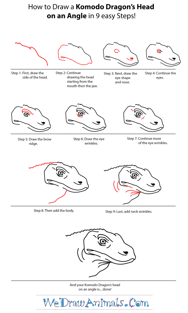 How to Draw a Komodo Dragon Head - Step-by-Step Tutorial
