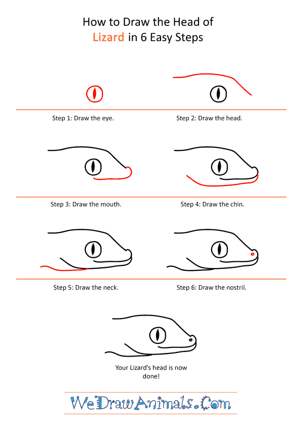 How to Draw a Lizard Face - Step-by-Step Tutorial