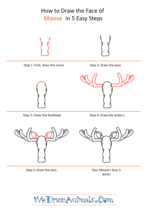 How to Draw a Moose Face - Step-by-Step Tutorial