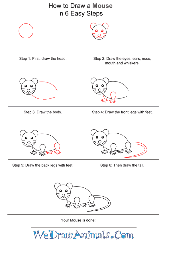 How to Draw a Mouse for Kids - Step-by-Step Tutorial