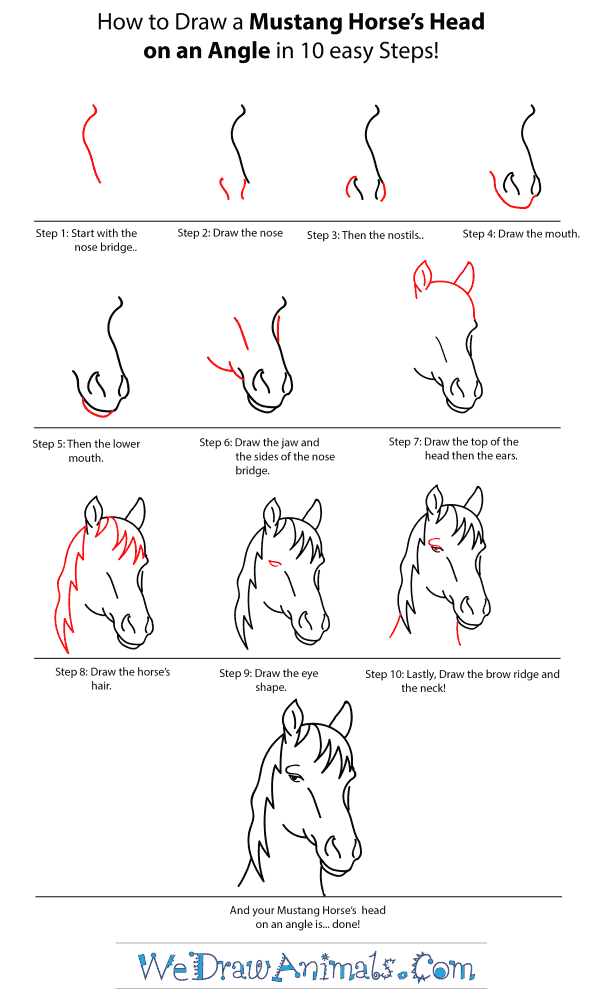 How to Draw a Mustang Horse Head - Step-by-Step Tutorial
