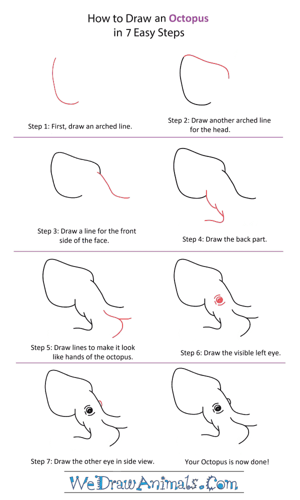 How to Draw an Octopus Head - Step-by-Step Tutorial