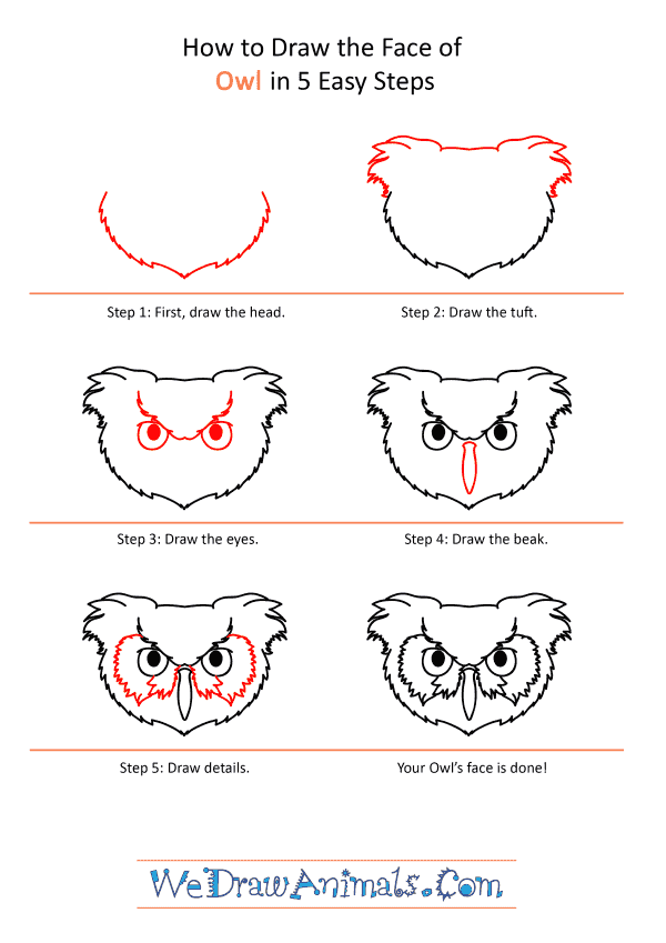 How to Draw an Owl Face - Step-by-Step Tutorial