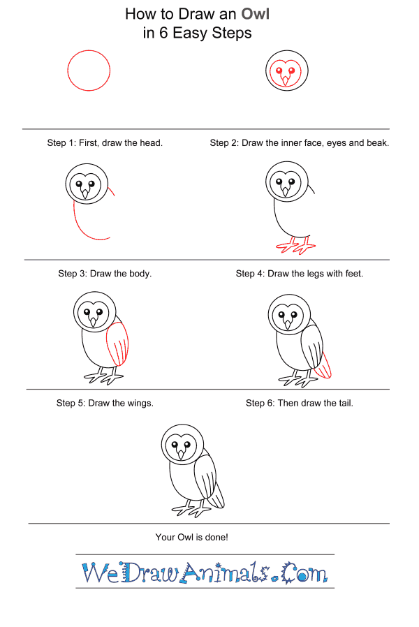 How to Draw an Owl for Kids - Step-by-Step Tutorial