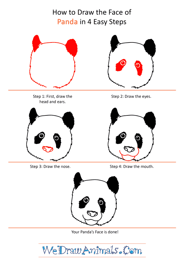 How to Draw a Panda Face - Step-by-Step Tutorial